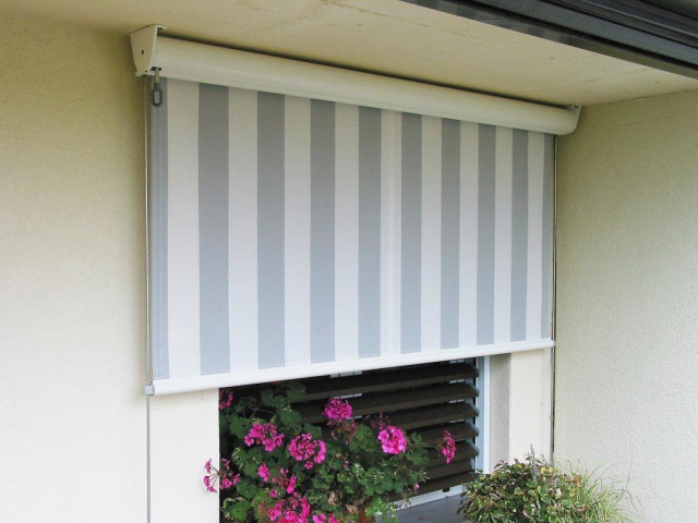 Toldo box vertical